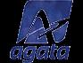 AGATA, Lietuvos gretutinių teisių asociacija