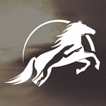 Laimos žirgai, VšĮ