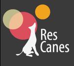 RES CANES, šunų mokykla